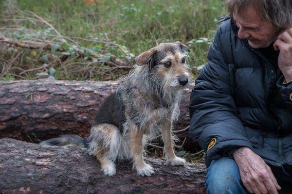 Uli Stein sitzt mit einem Hund auf einem Baumstamm